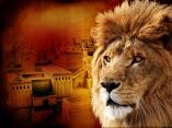 daniels lion